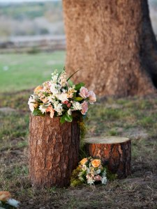 Ritzy Ranch: Romantic Rustic Vintage Wedding Theme