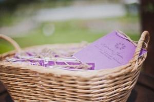 african violet invites