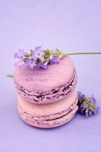 african violet macaron2