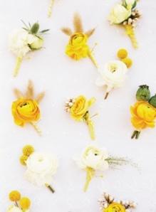 lemon zest 5