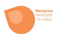 nectarine pantone