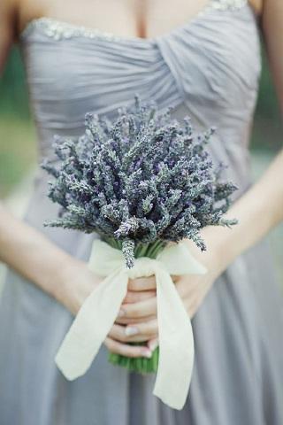 Lavender Theme 1