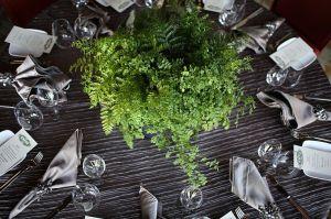 fern wedding 16